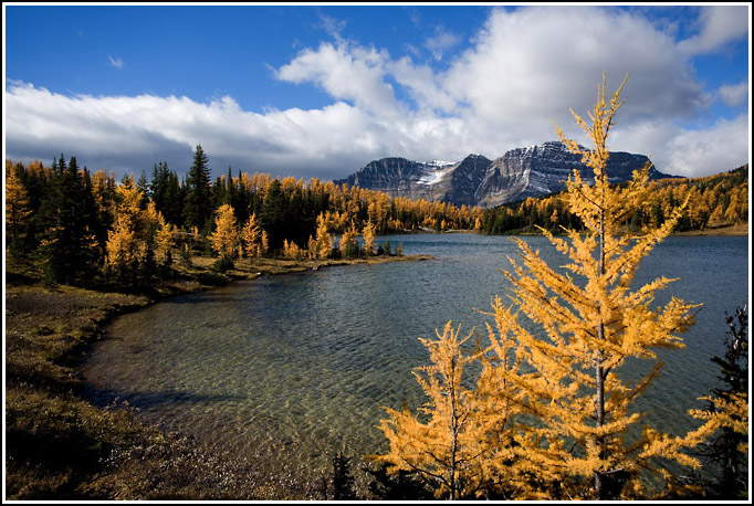 Autumn in the Rocky Mountains 2